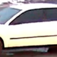 The Ottawa Police and Crime Stoppers are seeking the public's assistance in identifying a vehicle of interest in the Cobden Road January 31st homicide investigation. The vehicle is a white […]
