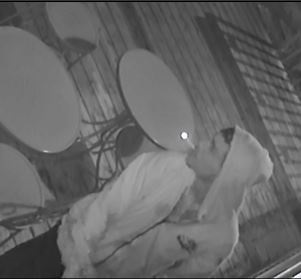 The Ottawa Police Service Break & Enter Unit is investigating a recent break & enter to a commercial premise and is seeking the public's assistance in identifying the suspect responsible. […]