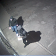 The Ottawa Police Service West Criminal Investigations Unitand Crime Stoppers are seeking the public's assistance in helping to identify two suspects who are responsible for mischief to religious property. In […]
